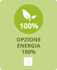 opzione 100% energia